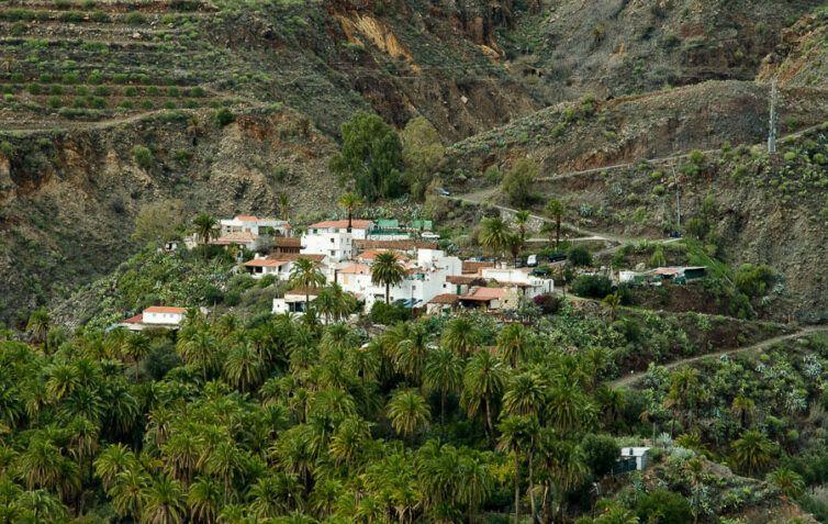 Santa Lucía de Tirajana - Palmerales
