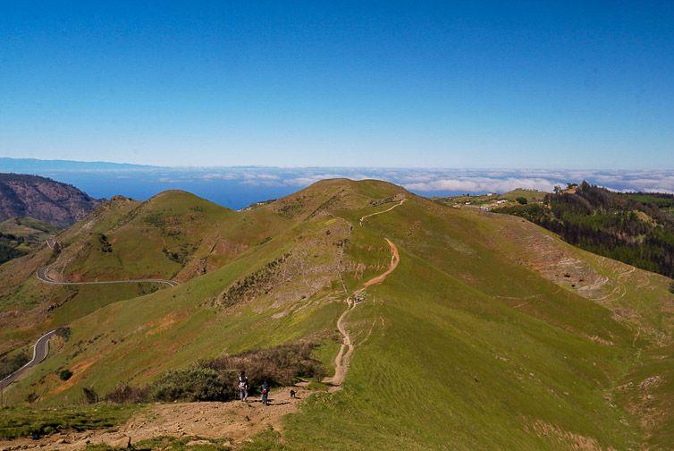 Monte Pavón en Santa María de Guía